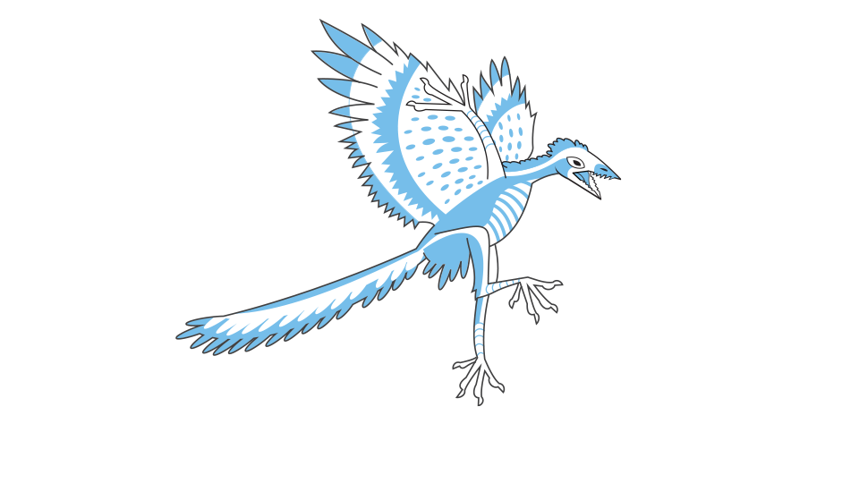 PNG Drawing of a Archaeopteryx