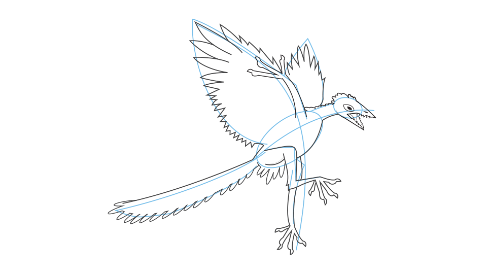 How to draw an archaeopteryx step 4