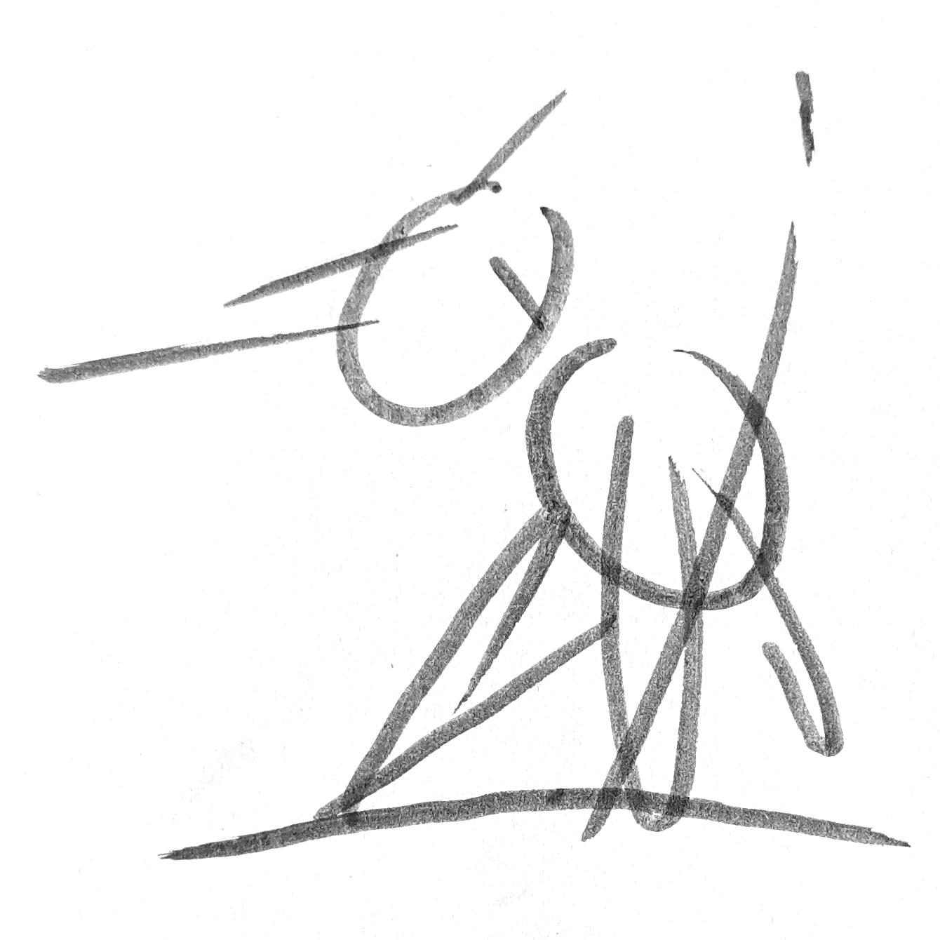 Rough outline of Pteranodon