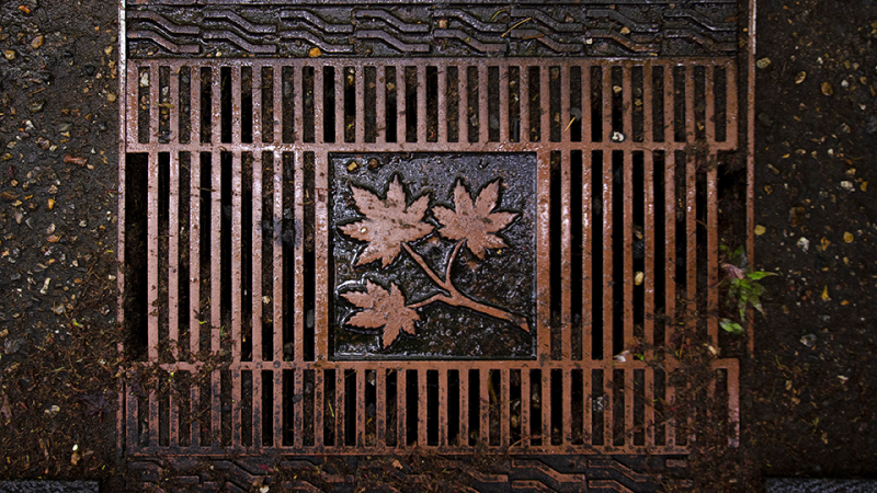 A sewer drain.