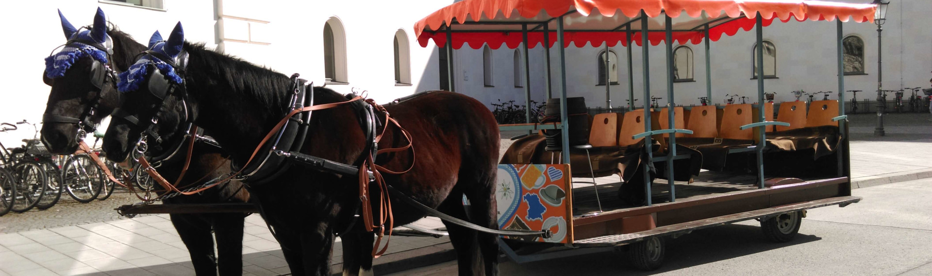 Munich Horse & Carriage Beer Tour image