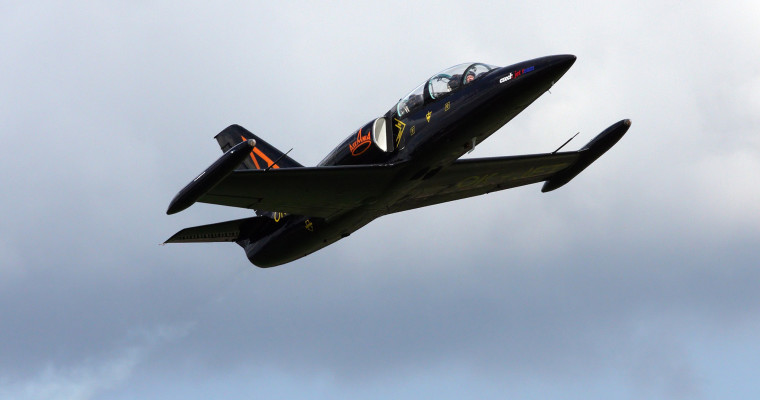 l39 albatros fighter jet in air SHT