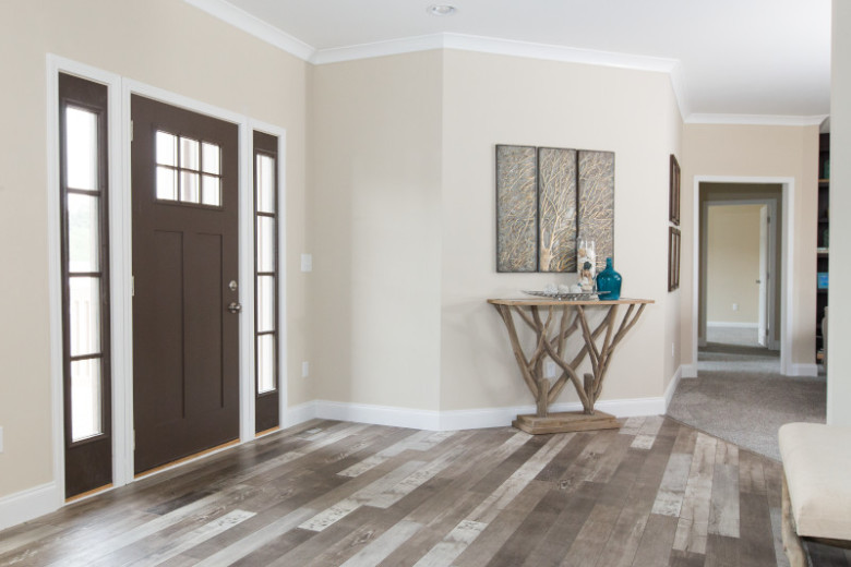 Foyer in a manufactured home with brown door, beige walls and natural-style decor.