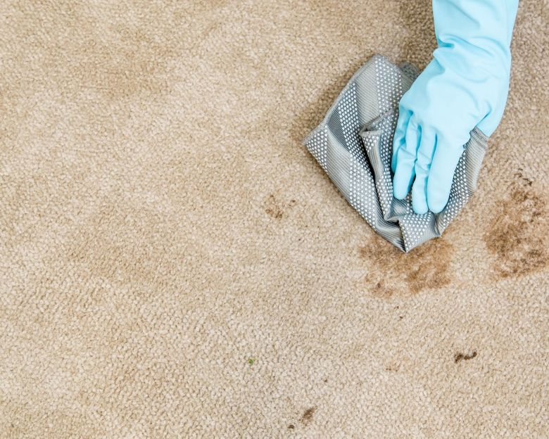 cleaning carpet spills