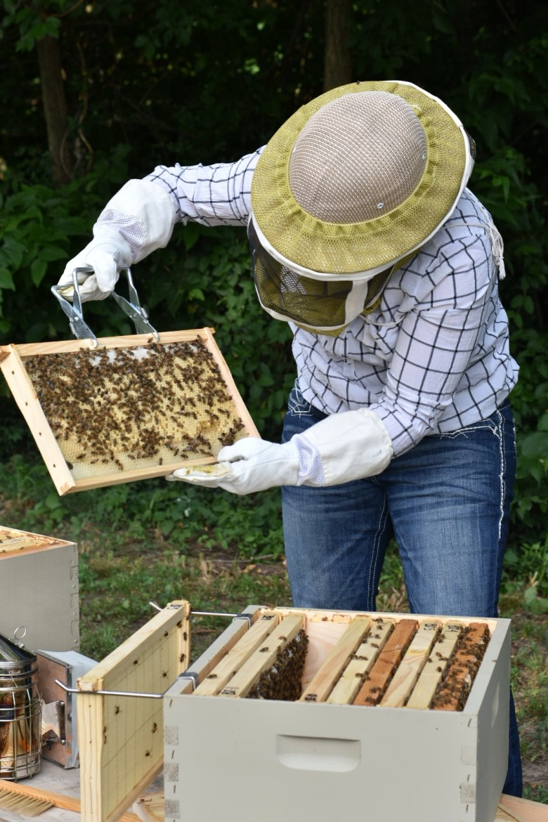 Picture of bee keeper holding up bees.