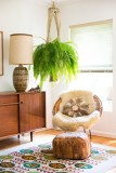 7 Beautiful Indoor Hanging Plant Ideas For Your Home