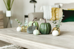 Manufactured home living room with miniature colored pumpkins on a coffee table.