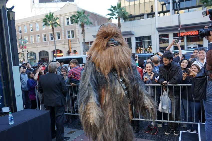 Chewbacca costume for stags