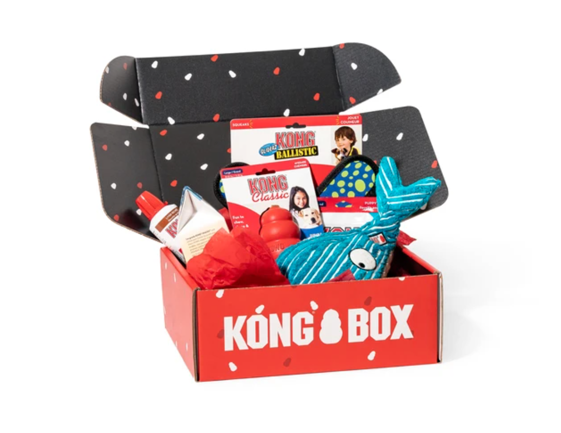 KONG box example of great customer experience on ecommerce | Pattern Blog