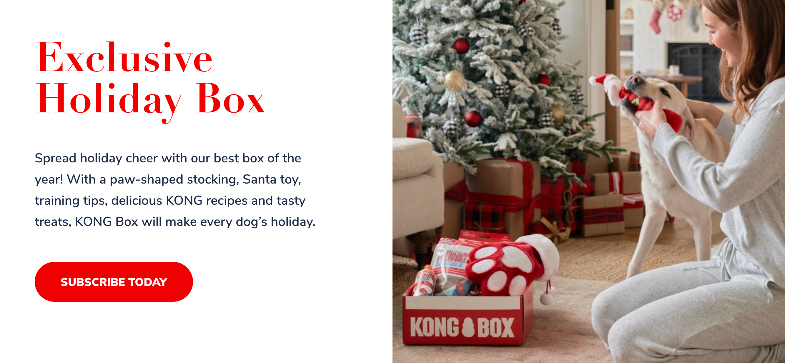 KONG Box case study example of great customer experience on ecommerce | Pattern Blog