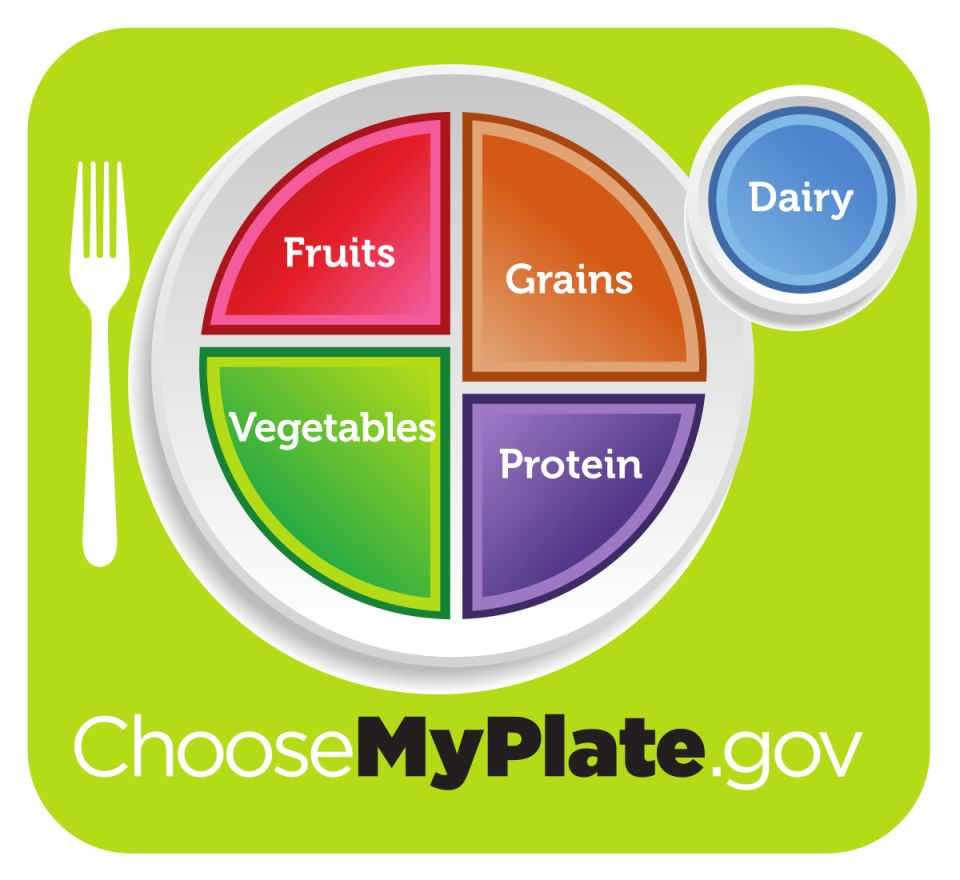 Choose my plate - fruit, vegetables, grains, protein, dairy