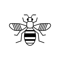 Bee network icon