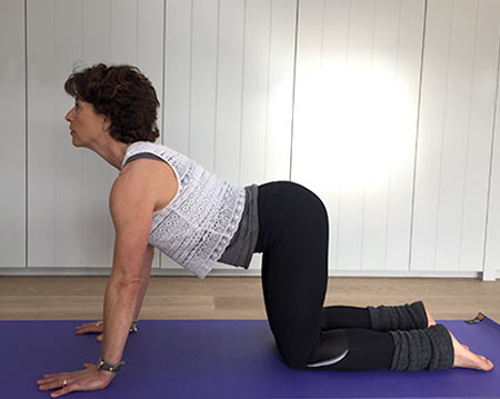 Fenella shows cat yoga pose with back arched