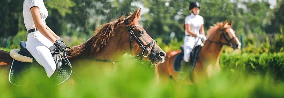 two women riding horses in field