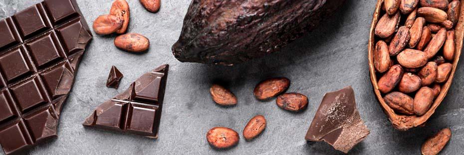 Cocoa flavanols: the definitive guide