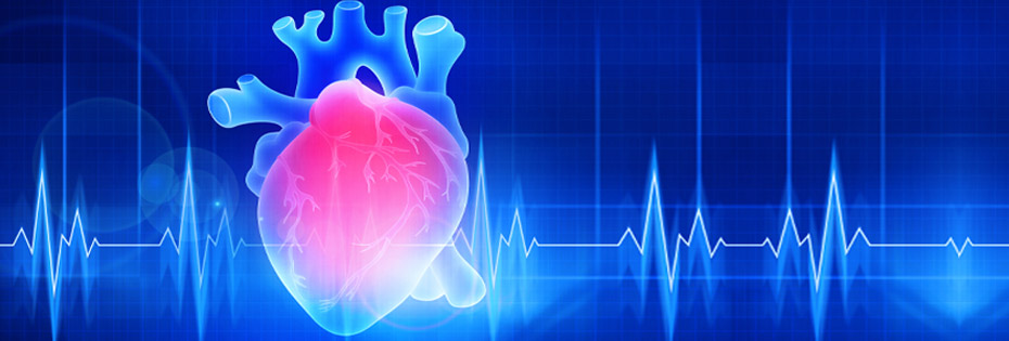 Love the beat: Your guide to a healthy heart