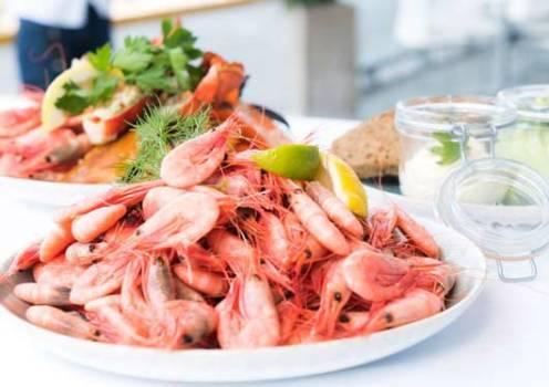Shrimp as a mineral