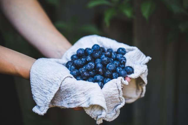 Blue berries close up