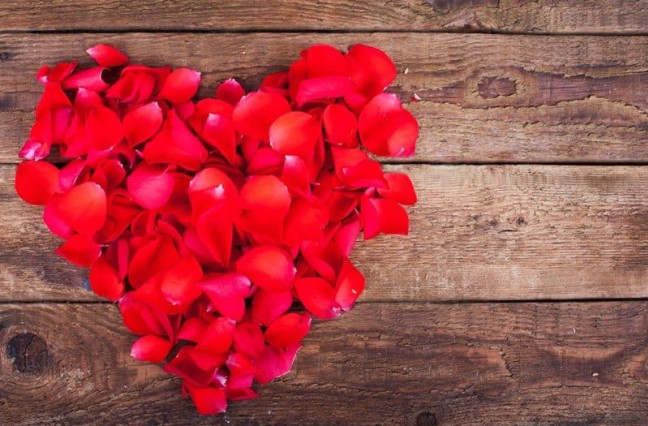heart made of rose petals on wood background