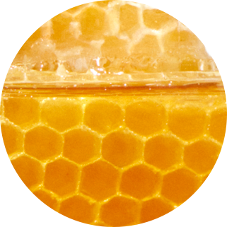 Honey extract ingredient