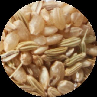 rice extract ingredient