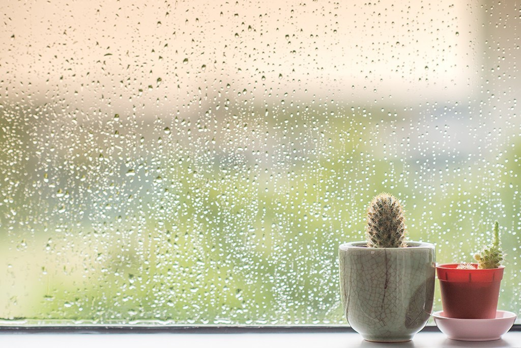 raining-window