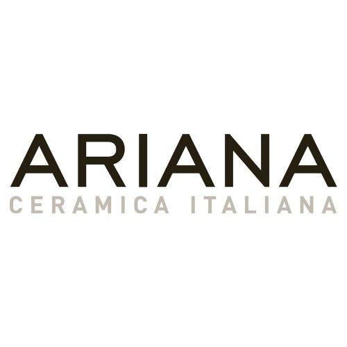 Logo ARIANNA Acces