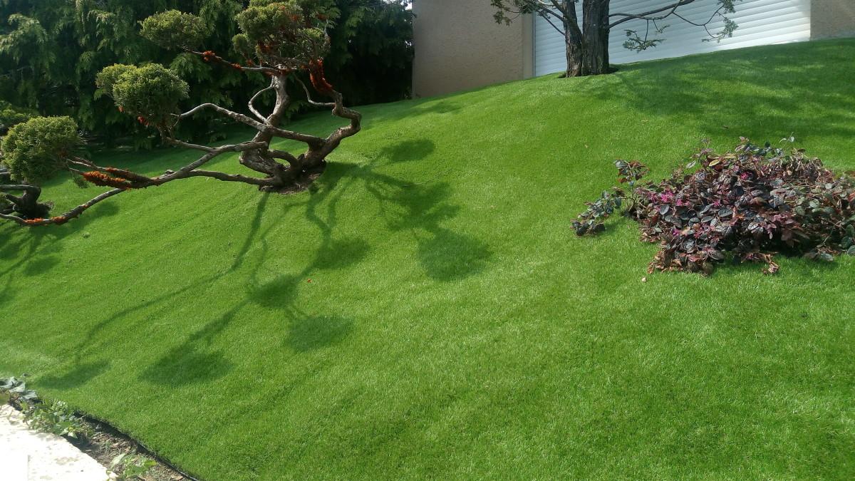 Carrousel_un-gazon-synthetique-bluffant-pour-un-jardin-en-relief_2
