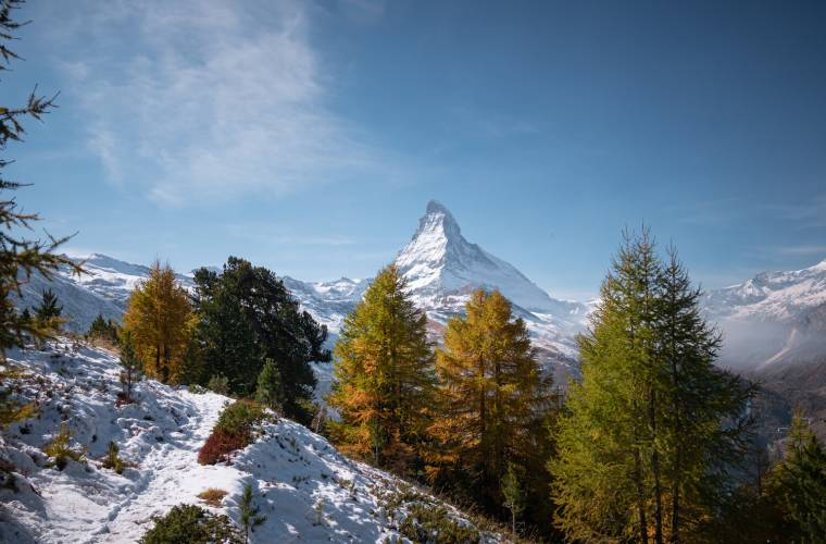 Winter hike through the pine forests of Zermatt