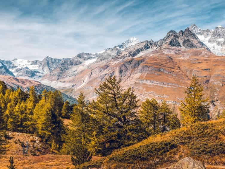 Herbst am Gornergrat zwischen Riffelalp und Riffelberg, Zermatt, Schweiz