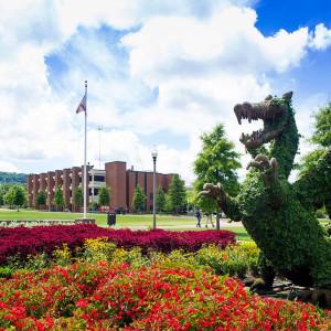 美国阿拉巴马大学伯明翰分校