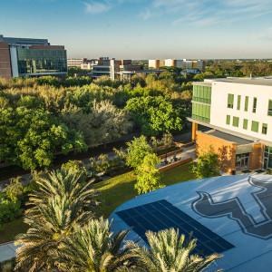 美国南佛罗里达大学