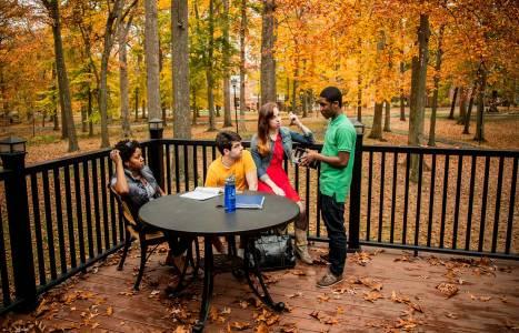 在德鲁大学的绿荫下学习
