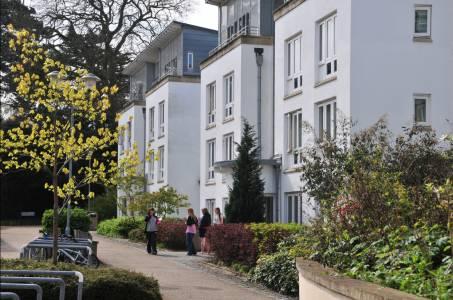 学生们站在Park Villas学生公寓外