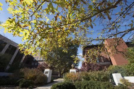 美国伊利诺伊州立大学校园绿化