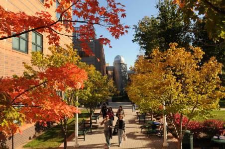 乔治梅森大学校园绿色颜色变幻