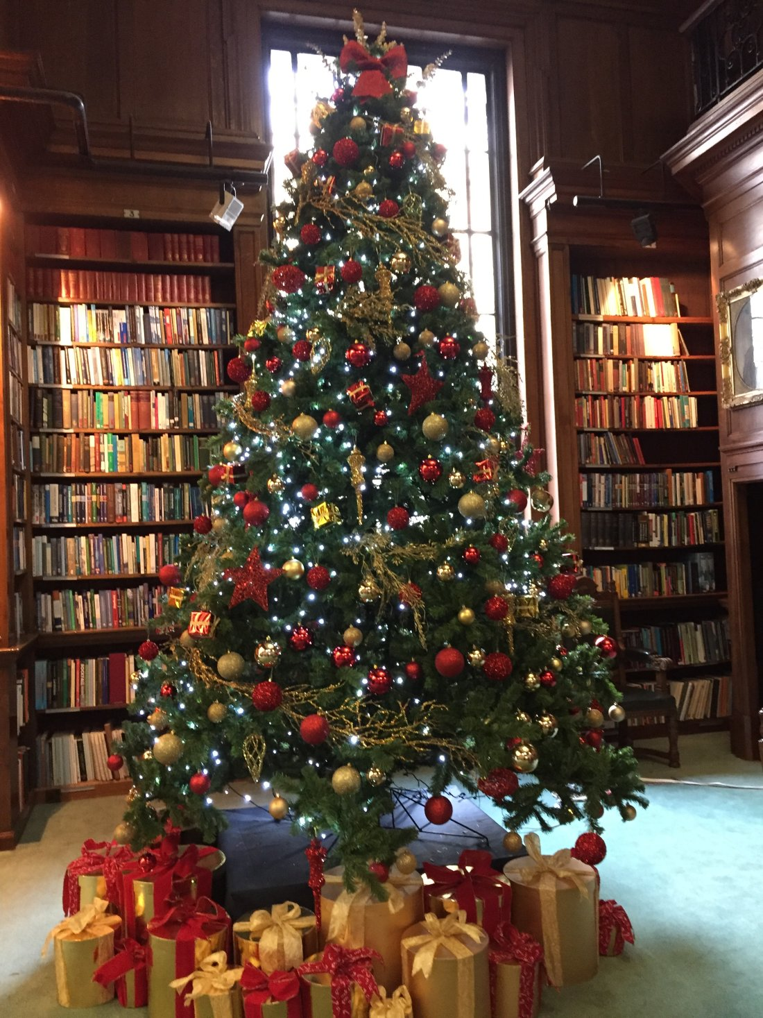 one-great-george-library-xmas-tree