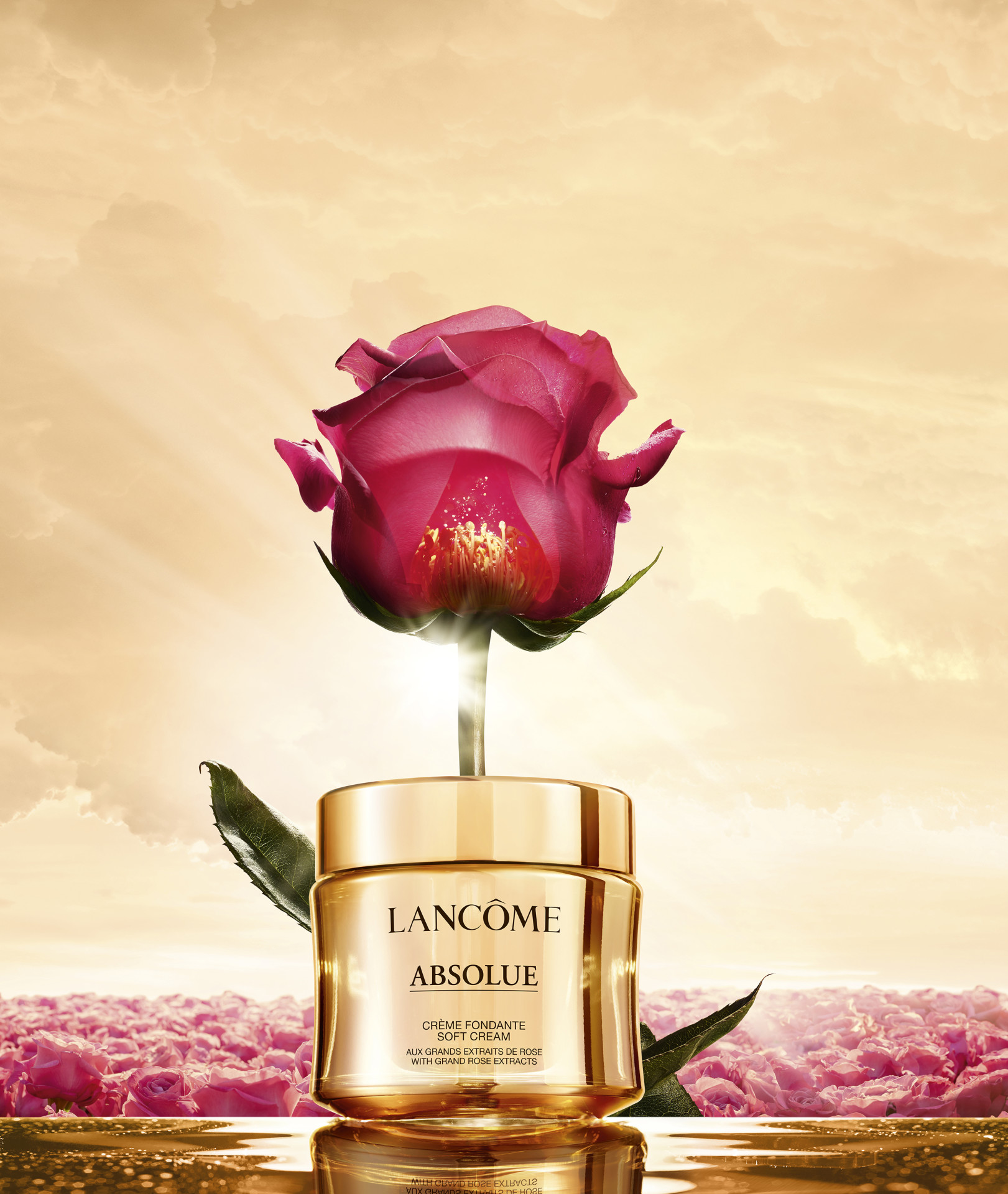 LANCOME ABSOLUE ROSE SP 9 110 CD