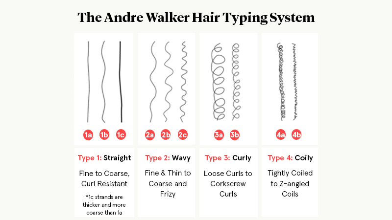 Hair Types Infographic UPDATED