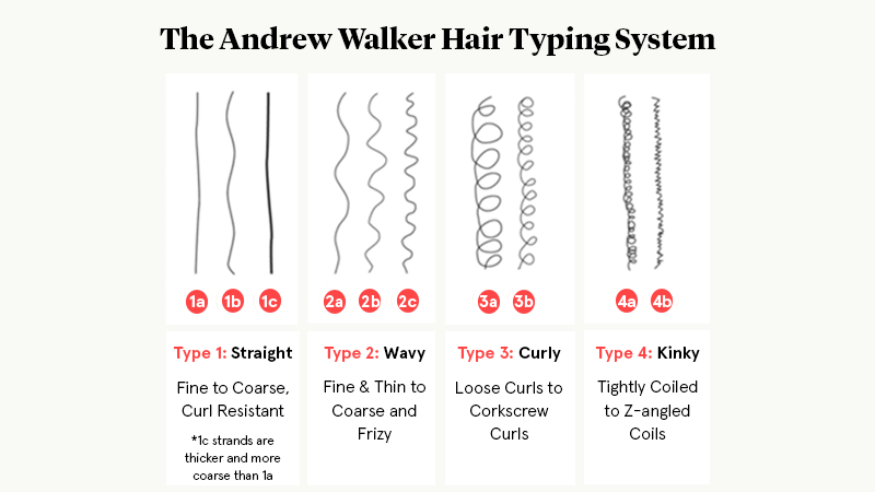 Hair Types Infographic resized