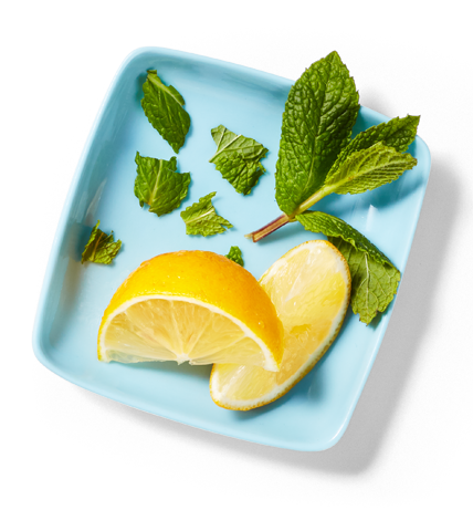 Plate containing 2 lemon wedges and a mint leaf