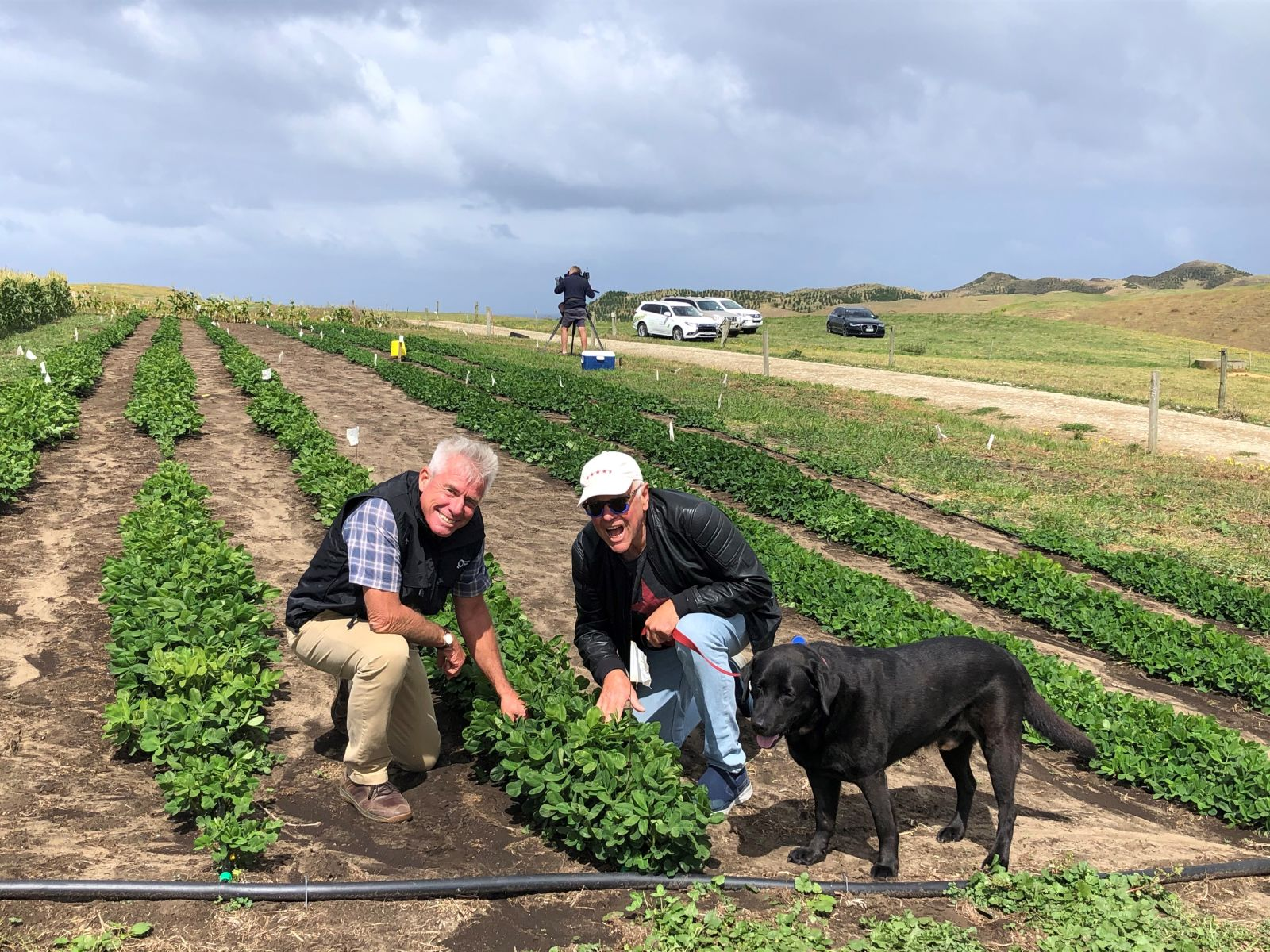 Pic's Peanut Butter to trial growing peanuts in Northland