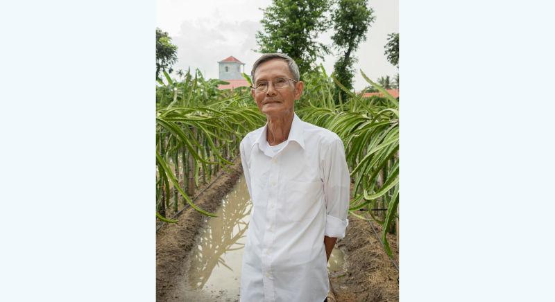Mr Tien: A model crop