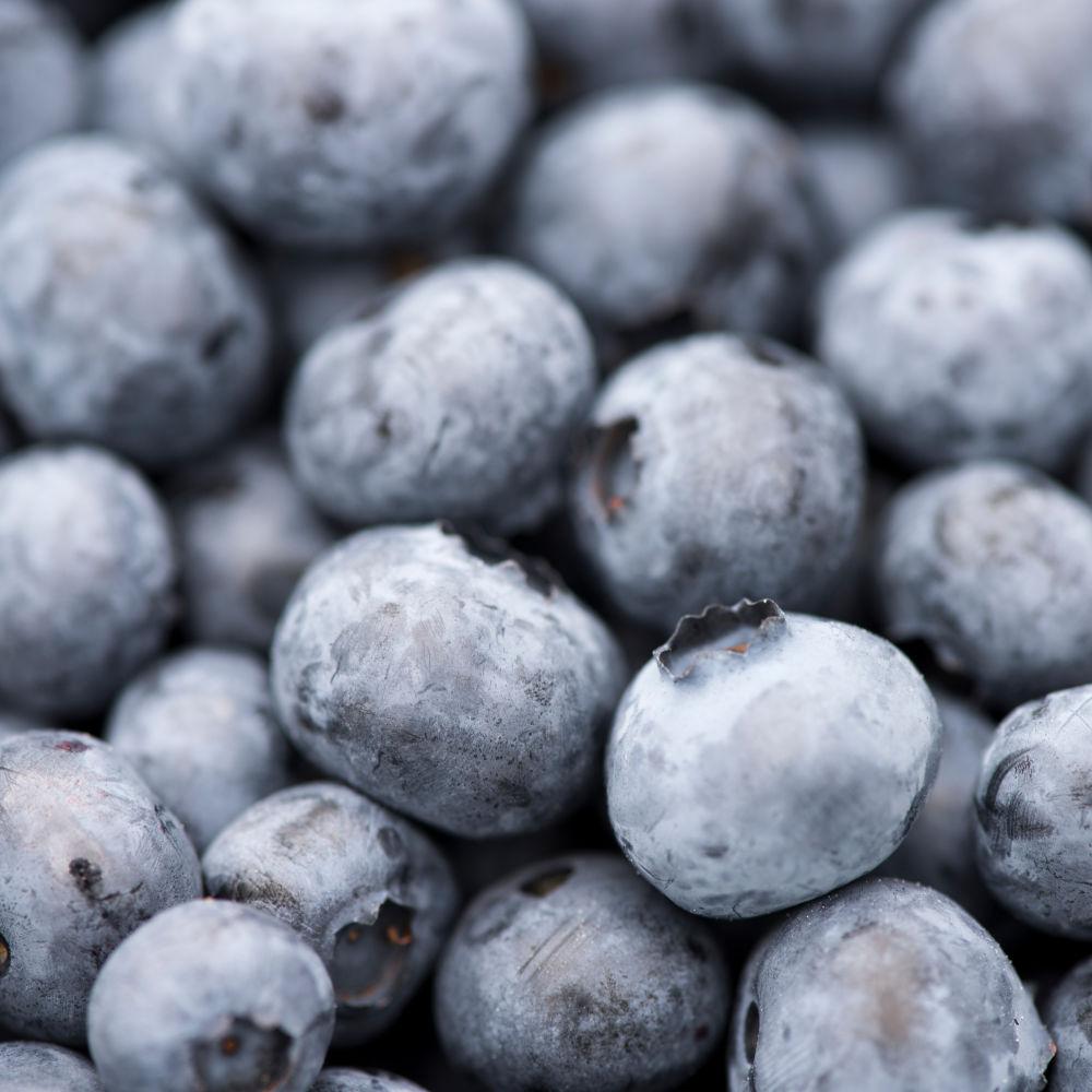 Lovely fresh blueberries