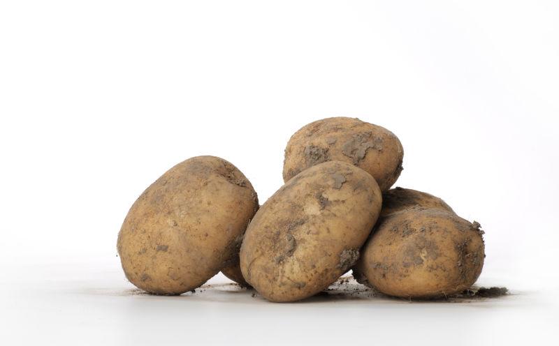 Potato Industry Forums 2021