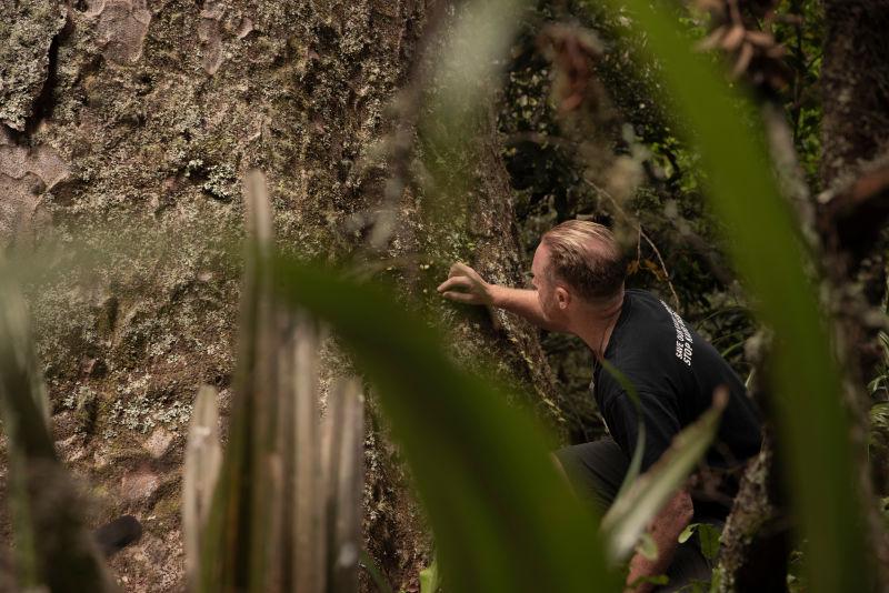 Kaitiaki (guardian) of New Zealand's natural treasures