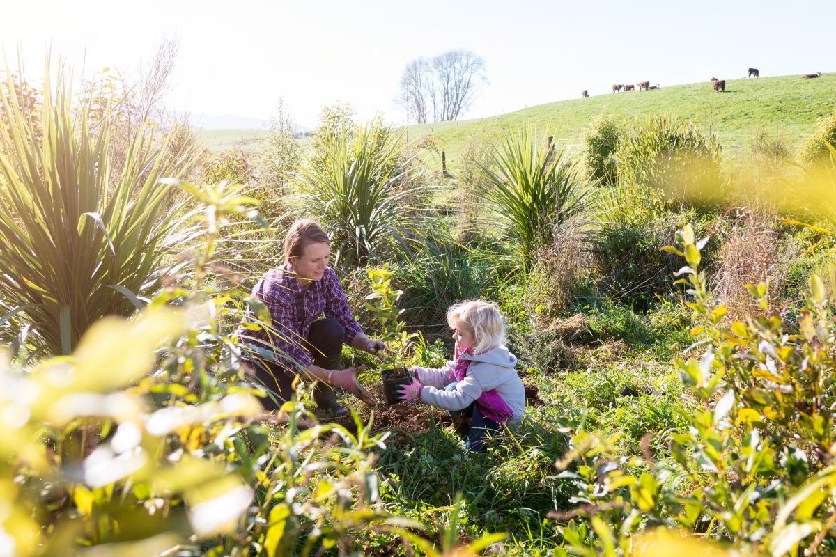 A sustainable farming scene