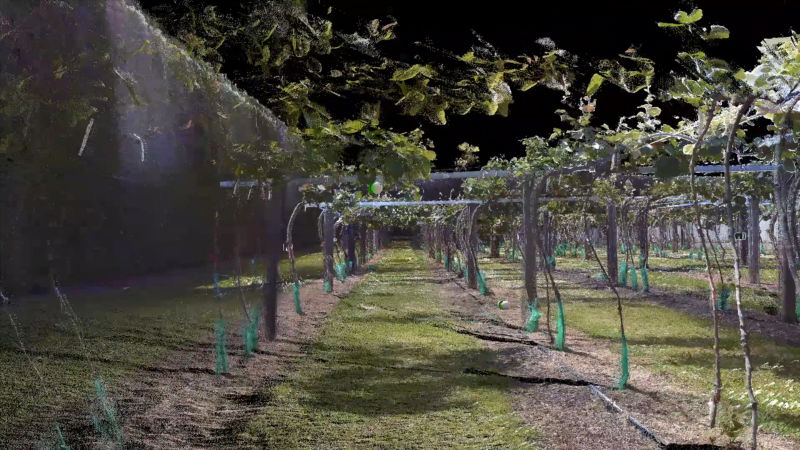 AI — virtual orchards, insect superpowers and intelligent computer vision