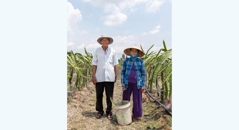 Dao Van Du and Pham Thi Hoang: bearing fruit