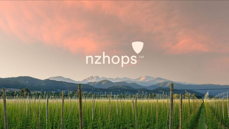 New collaborative research agreement locks in a sustainable future for New Zealand hops